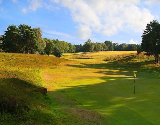 The Royal Ashdown Forest Golf Club